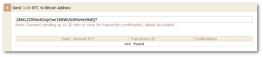 Bitcoin-Payment-Instructions